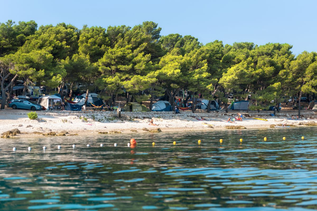 8065 - Adriatik Kamp